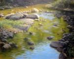 'Stream Golds' by John MacDonald