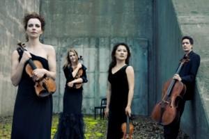 Daedalus Quartet (by Lisa-Marie Mazzucco)