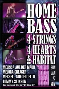 Home Bass poster
