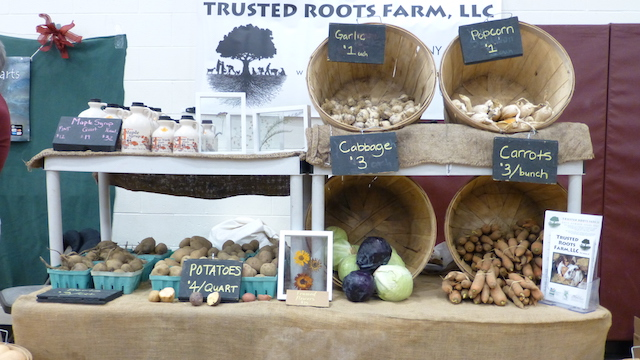 Trusted Roots (photo Jonathan Hankin)