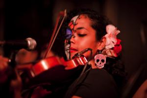 Mariachi violin color